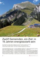 thumbnail of 201910_SchweizerGemeinde
