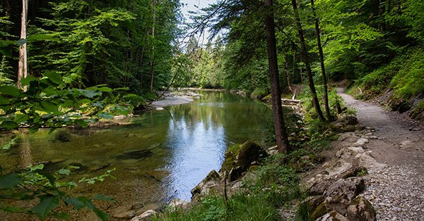 Fluss mit entlanglaufendem Wanderweg
