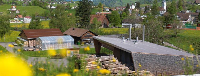 Holzenergiezentrum Toggenburg im Sommer