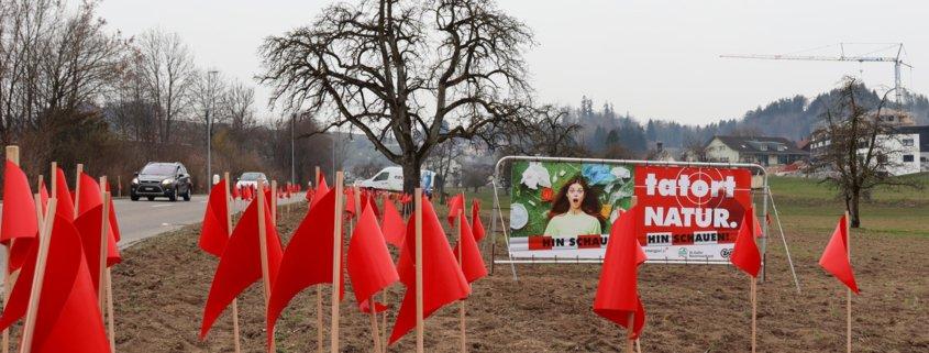 Rote Fahnen auf Feld entlang einer Hauptstrasse